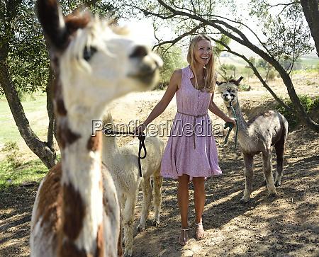 happy blond woman with alpacas