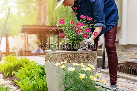 woman planting flowers in pot at