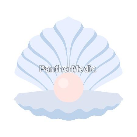open seashell icon