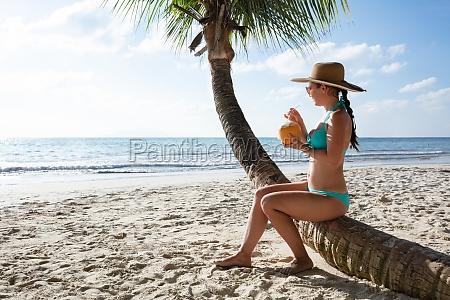 frau im bikini trinken das kokoswasser