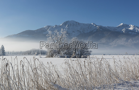 germany upper bavaria werdenfelser land winter