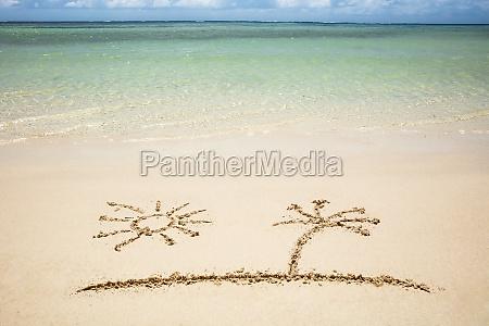 sun and palm tree drawn on