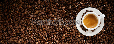 fresh roasted coffee bean background with