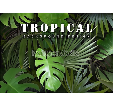 tropical background with jungle plants