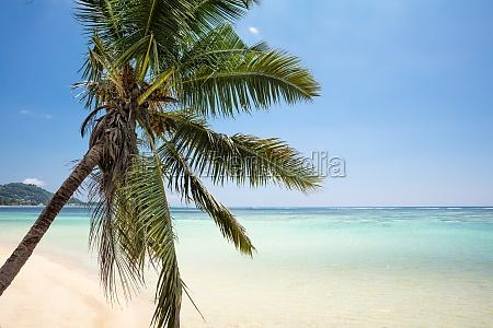idyllic view of sea at beach