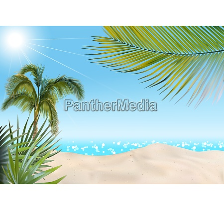 beach with palms and sea background