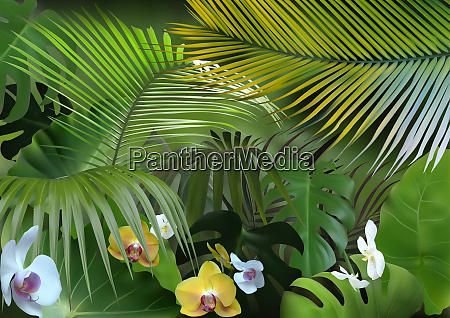 tropical background with photorealistic vegetation