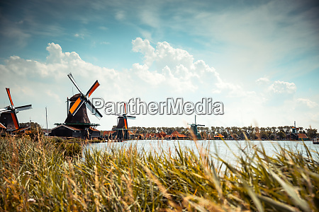 traditional hollands windmills