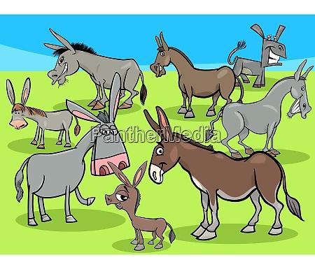 funny donkeys cartoon farm animals group