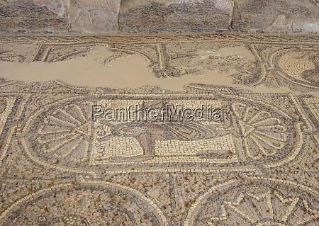 mosaic floor of the byzantine church