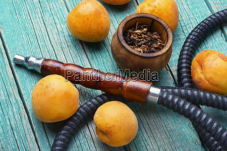 arabien shisha mit aprikosen tabak