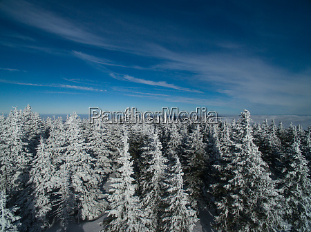 aerial, view, of, winter, forest, - - 27072371