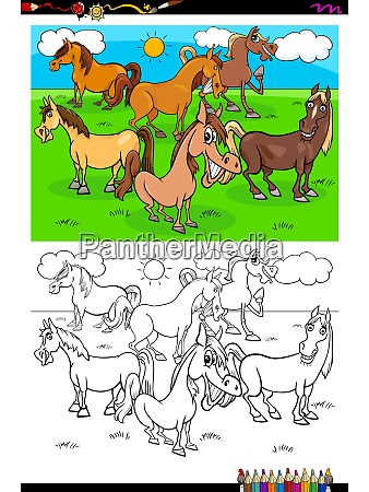 horses farm animal characters group color