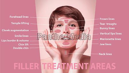 die bereiche fuer die verjuengung kosmetologischer