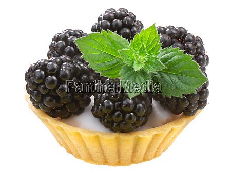 blackberry mint dessert paths