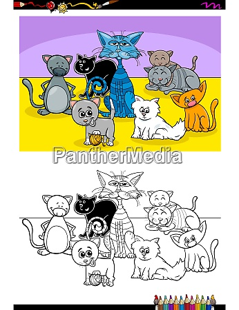 funny cats animal characters group color