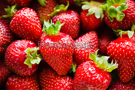 background of fresh ripe strawberries macro