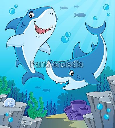 shark topic image 4