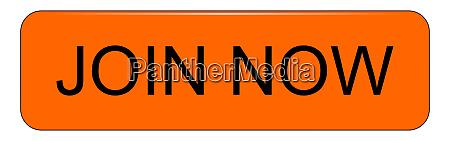 orange join now button illustration