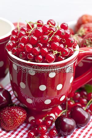 rote sommerfruechte in polka dot becher
