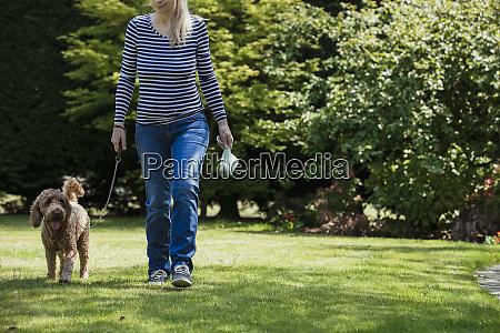 hunde walking verantwortung