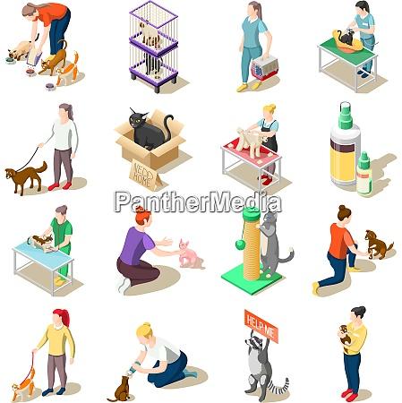 satz von isometrischen ikonen tierpflege freiwillige