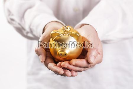 hands holding a piggy bank