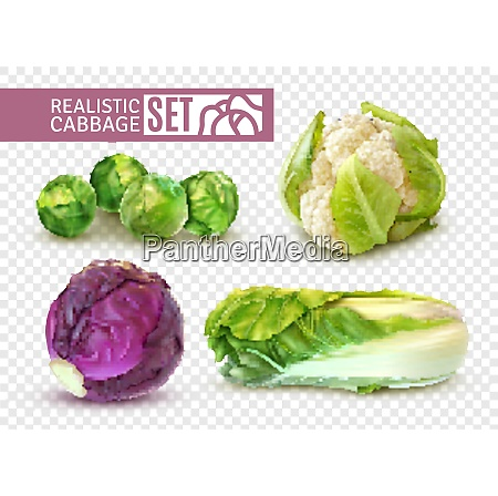 realistic set with brussels sprouts chinese