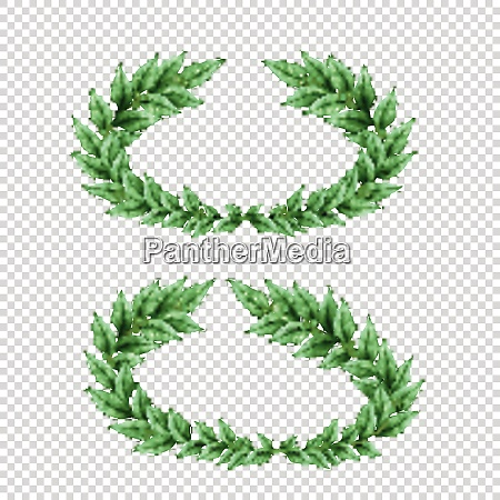set of two isolated green laurel
