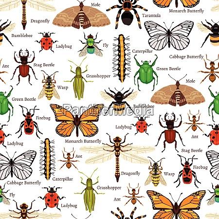 insekten nahtlose muster insekten flache vektor