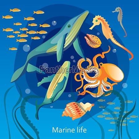 ozean, unterwasser, leben, hintergrund., meer, unterwasser - 27181621