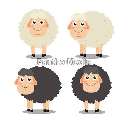 cute cartoon black and white sheep
