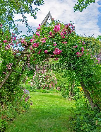 idyllischer rosengarten
