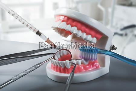 dental health and treatment dentist