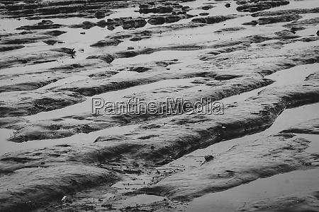 gezeitenschlamm ripple strand ebbe natur an