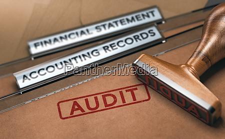finanzauditing untersuchen von unternehmensbuchhaltungsdatensaetzen