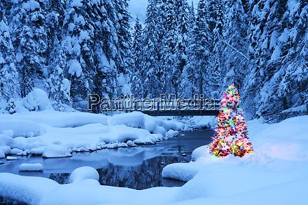 weihnachtsbaum, neben, einem, bach, smaragdsee, yoho-nationalpark, britisch-kolumbien, kanada, nordamerika - 27265980