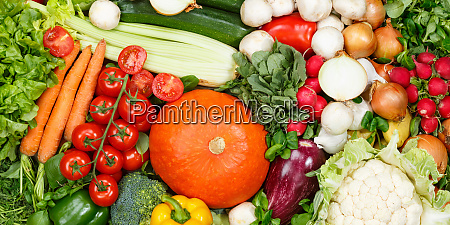 vegetables collection food background banner tomatoes