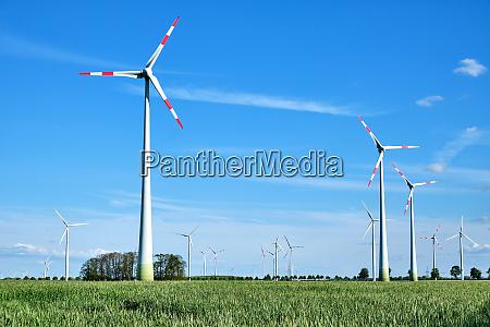 moderne windenergiegeneratoren in einem maisfeld in