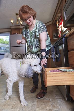 pudel service hund schliesst eine kuechenschublade