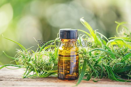 cannabidiol cbd extrakt in einer flasche