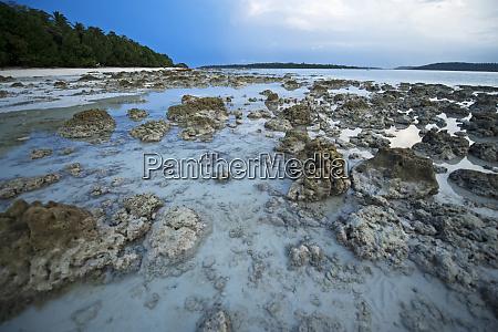 india andaman islands havelock white sand