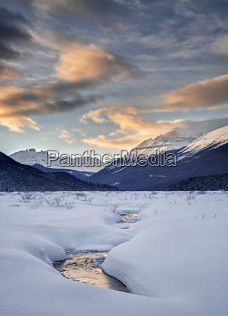 agua alberta ann collins blau kanadische