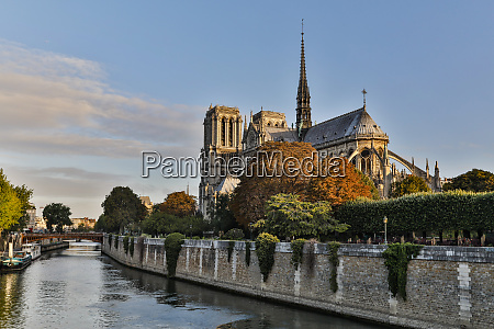 morning light on cathedral notre dame