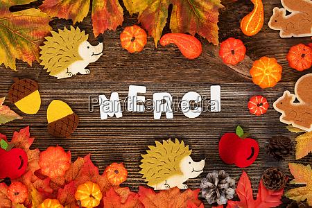 merci thank you thanksgiving autum leaves
