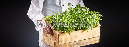chef in white uniform carrying fresh