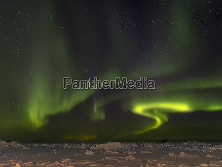 northern lights over the frozen shore