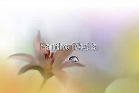 blume rahmen golden gruesse urlaub illustration