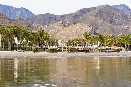 mexico baja california sur sea of