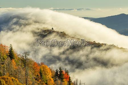 autumn colors and mist at sunrise